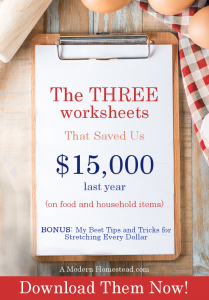 The Three Worksheets that saved us $15,000 last year. Victoria Pruett - A Modern Homestead