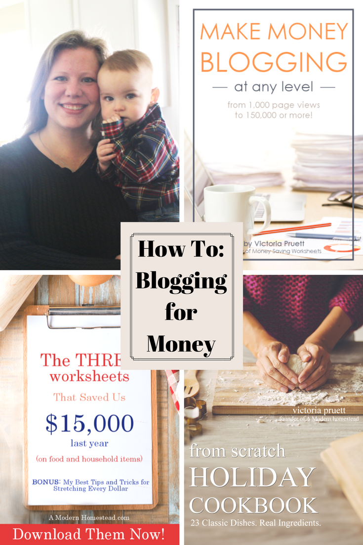 Want to Learn How To Start Blogging for Money? These are the 3 Products that made Victoria over $2250 last month.