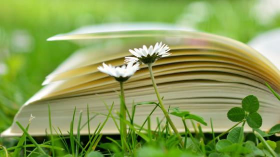 Why Self Publish