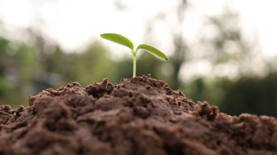 How to Make Your Small Business Sustainable